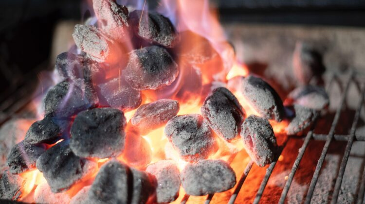The 5 Best Lump Charcoals Consumer Reports for 2021 Reviews